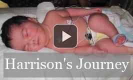 Harrison's Journey Video
